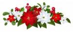 18272978-bouquet-di-natale-con-rosso-e-bianco-stelle-di-natale-agrifoglio-e-vischio